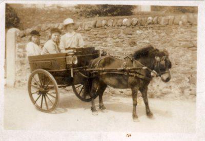 Pony and trap Wright family