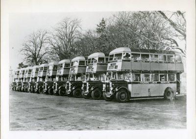 Line of  Albion buses Venturer