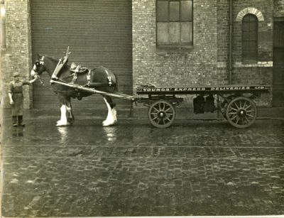 Youngs Express Deliveries Empty horse cart