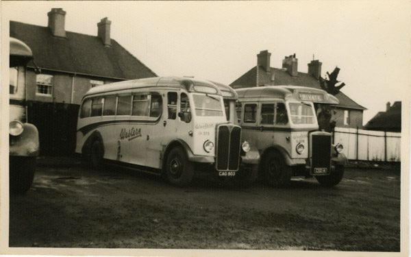 Single decker Leyland and AEC buses