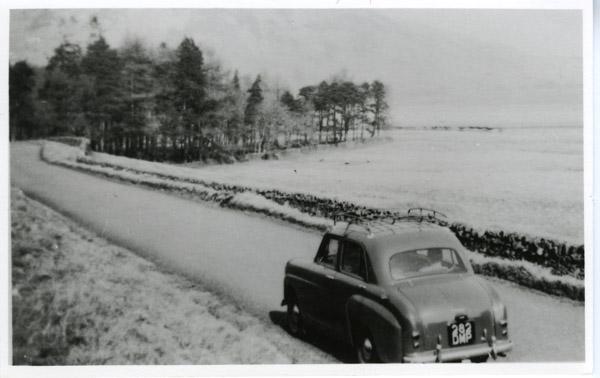 Standard - Snow scene