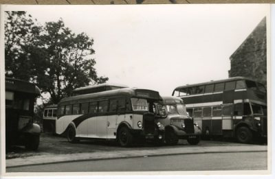 Leyland and Bedford - Bus graveyard